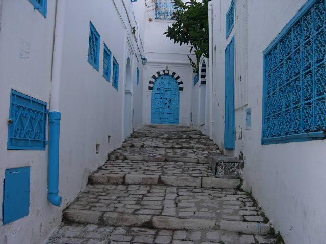 Тунис. Синий город - Sidi Bou Said 45273