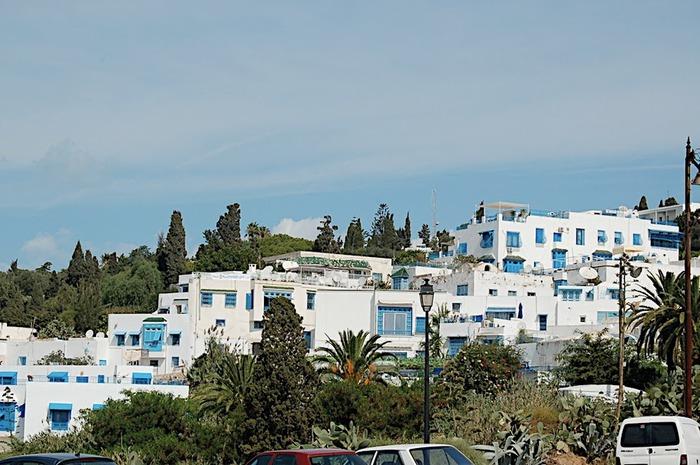 Тунис. Синий город - Sidi Bou Said 88765