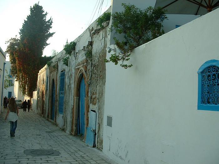 Тунис. Синий город - Sidi Bou Said 56602