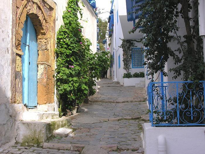 Тунис. Синий город - Sidi Bou Said 70911
