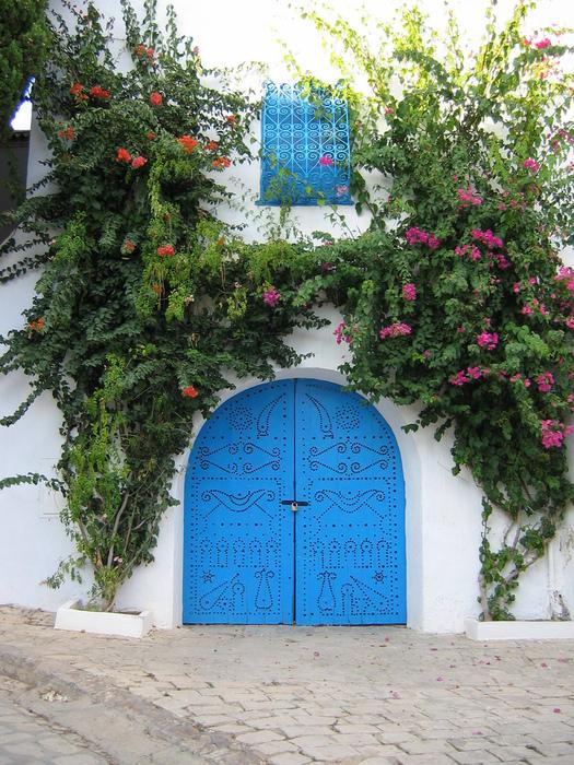 Тунис. Синий город - Sidi Bou Said 66029
