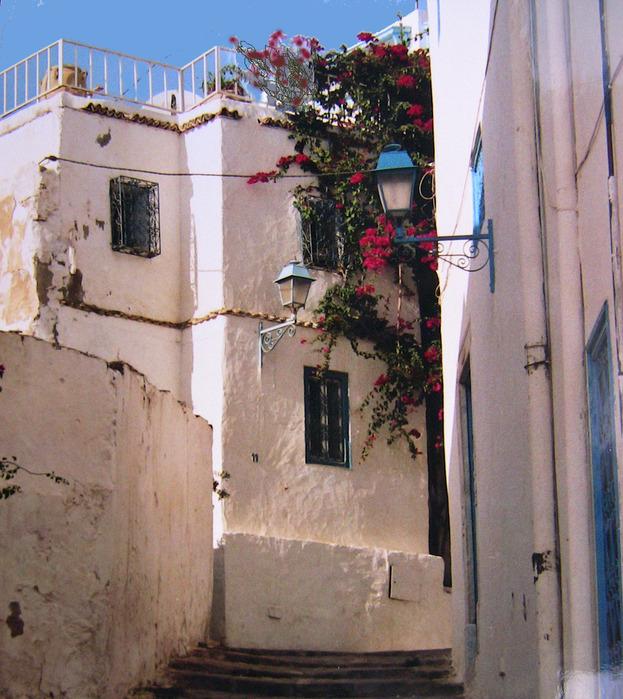 Тунис. Синий город - Sidi Bou Said 94770