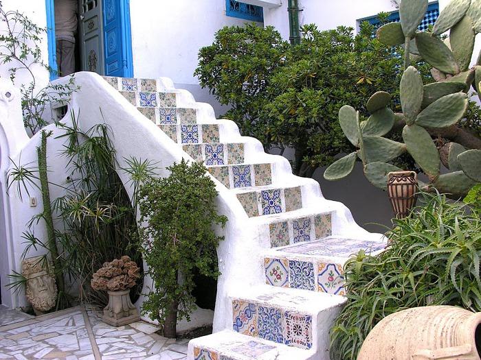 Тунис. Синий город - Sidi Bou Said 98124