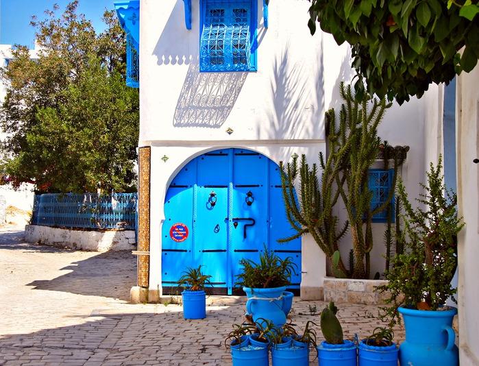Тунис. Синий город - Sidi Bou Said 29702