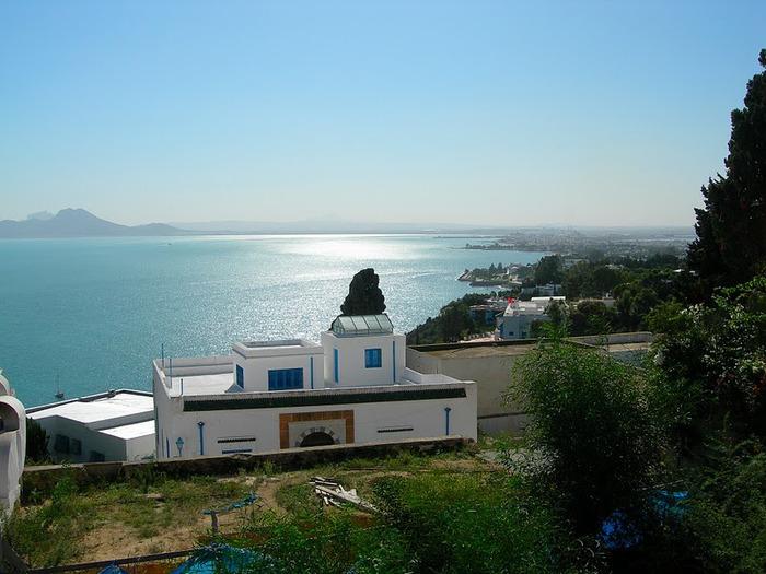 Тунис. Синий город - Sidi Bou Said 42097
