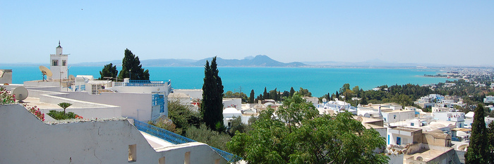 Тунис. Синий город - Sidi Bou Said 25015