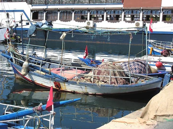 Порт Эль Кантауи 33655