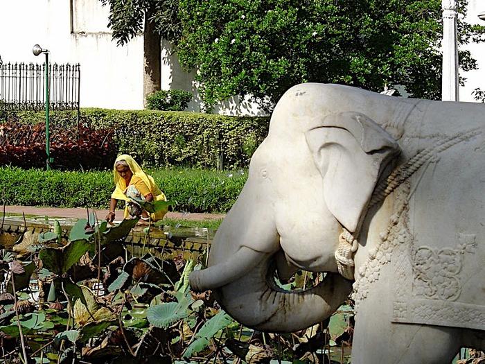 Удайпур. Udaipur 85115