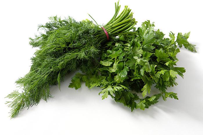 Как заготовить на зиму зелень
