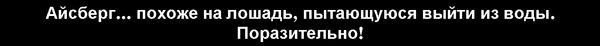 (600x46, 8Kb)