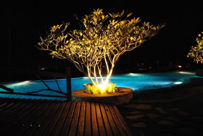 Тайланд - Острова Пи Пи--Phi Phi Islands 35486