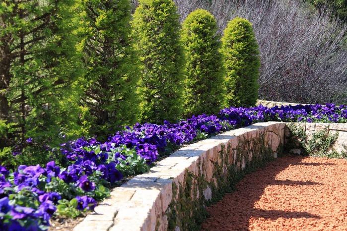 Хайфа, Бахайские сады 21049