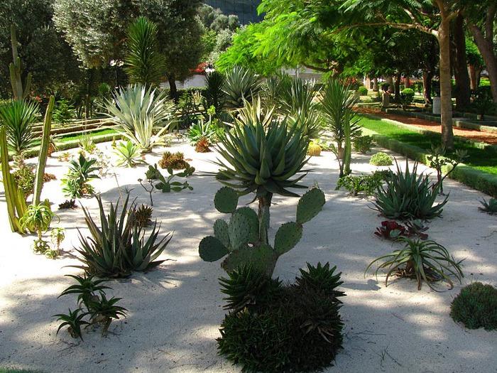 Хайфа, Бахайские сады 48851