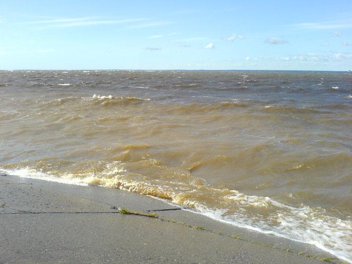 финский залив, шторм