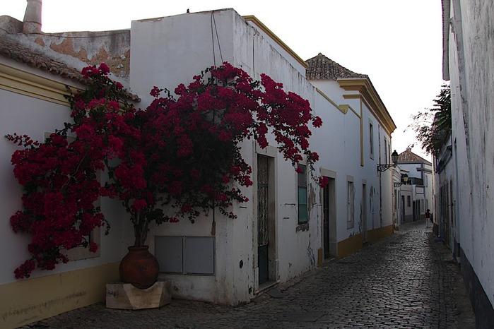Португалия - Алгарве 86778