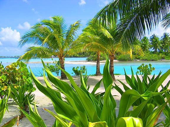 Остров Бора-Бора - жемчужина Тихого океана с перламутровой лагуной 84678