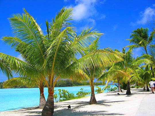 Остров Бора-Бора - жемчужина Тихого океана с перламутровой лагуной 57021