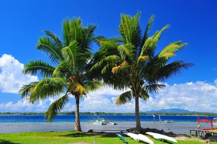 Остров Бора-Бора - жемчужина Тихого океана с перламутровой лагуной 51678