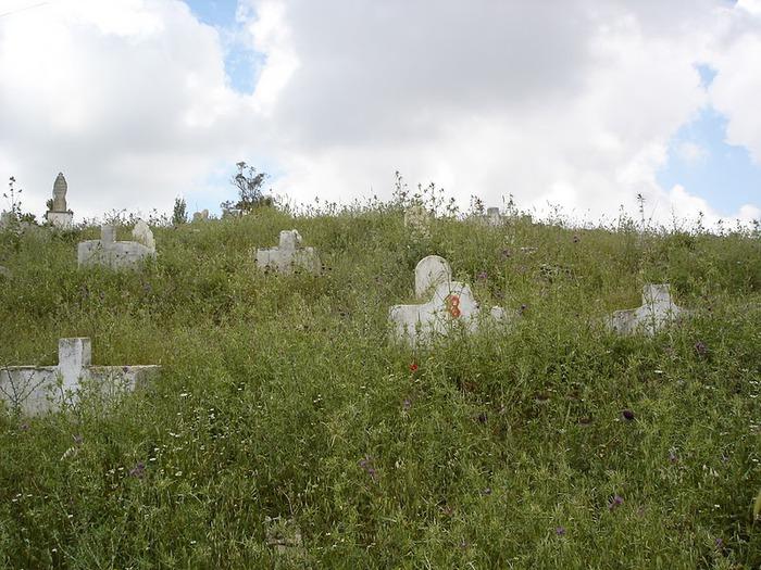 Крепость Крак-де-Шевалье или Крак де л'Оспиталь 37161