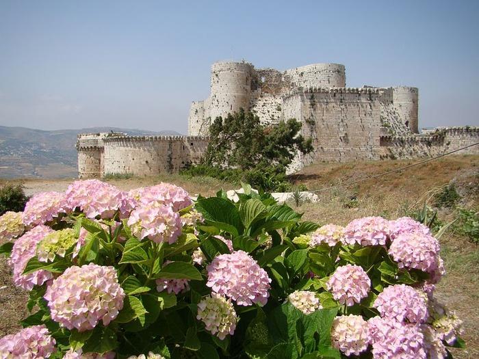 Крепость Крак-де-Шевалье или Крак де л'Оспиталь 81638