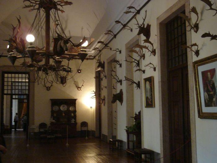 Дворец-монастырь да Мафра (Марфа, Португалия) 40691