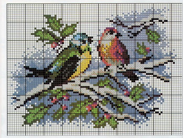 ptici zimoi