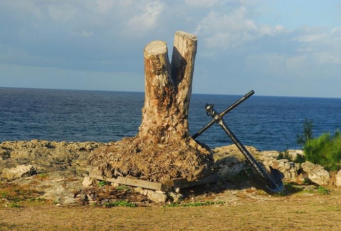 Бородатые фиги и пропавшие сокровища капитана Флинта. 47910