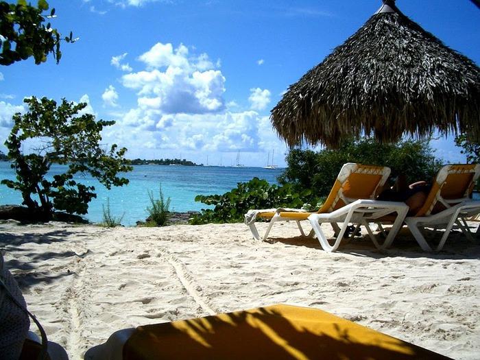 Доминикана - тропический рай. 22919