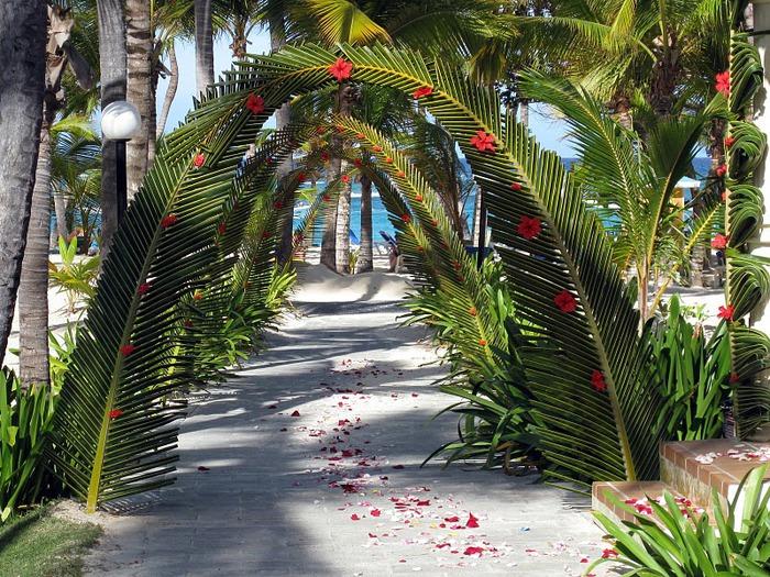 Доминикана - тропический рай. 29844