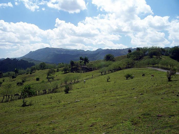 Доминикана - тропический рай. 44428