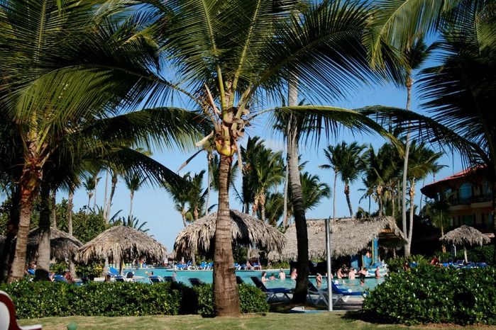 Доминикана - тропический рай. 21573