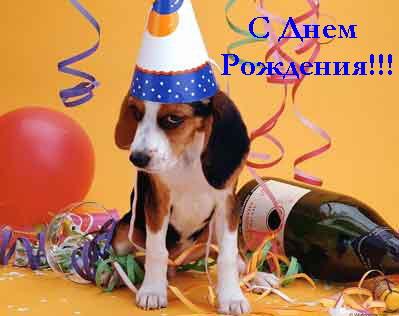 http://img1.liveinternet.ru/images/attach/c/1//62/156/62156518_HB2.jpg