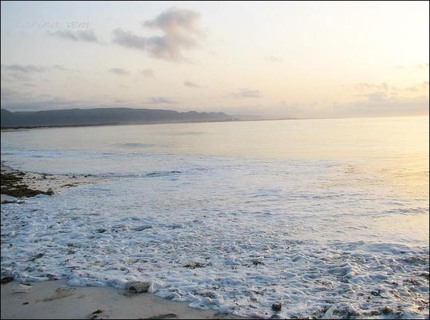 Сокотра – забытый рай на земле