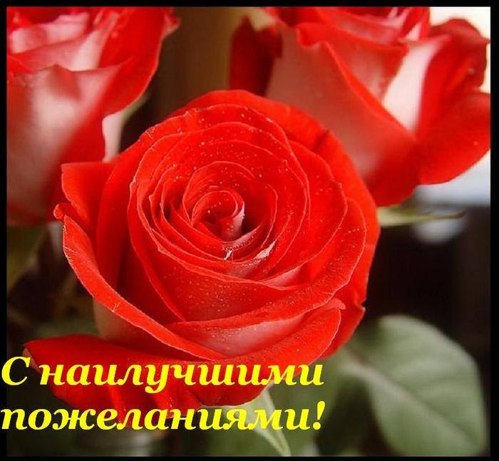 45905338_s_nailuchshimi_pozhelaniyami (700x647, 56 Kb)