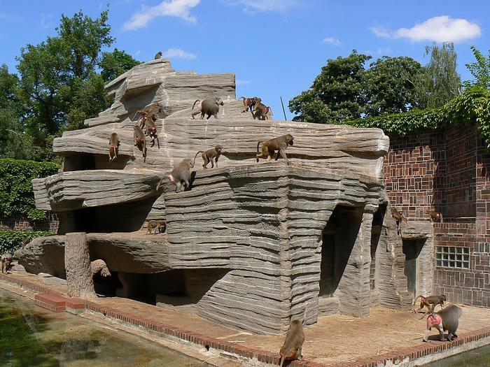 Зоологический сад в Лейпциге (Zoologischer Garten, Leipzig ) 76377