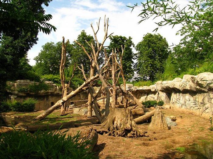 Зоологический сад в Лейпциге (Zoologischer Garten, Leipzig ) 97687