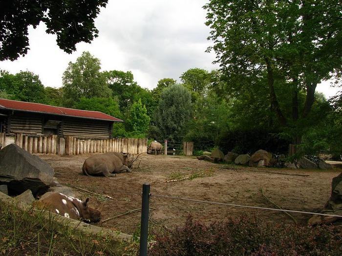 Зоологический сад в Лейпциге (Zoologischer Garten, Leipzig ) 18141