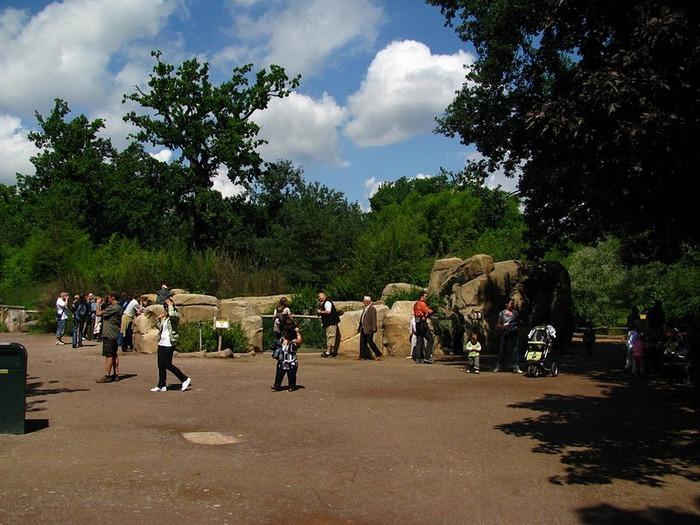 Зоологический сад в Лейпциге (Zoologischer Garten, Leipzig ) 75832