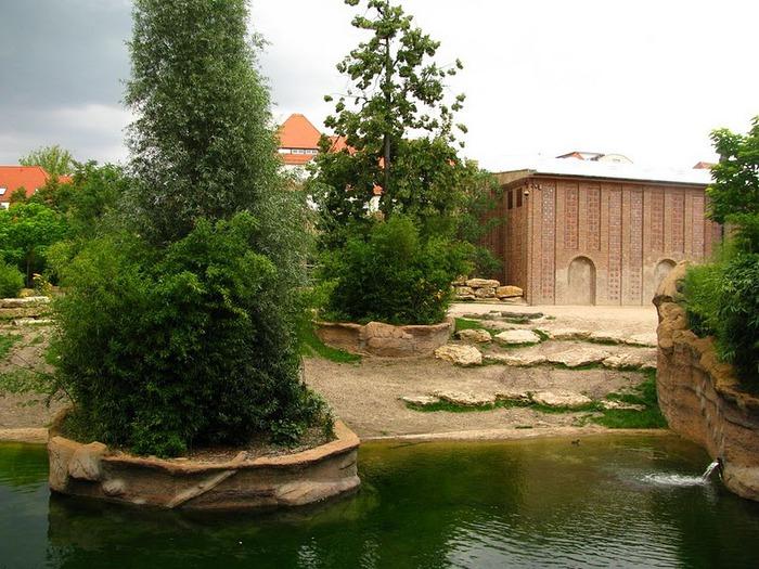 Зоологический сад в Лейпциге (Zoologischer Garten, Leipzig ) 67078