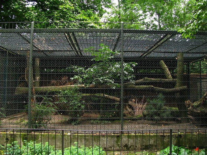 Зоологический сад в Лейпциге (Zoologischer Garten, Leipzig ) 31690