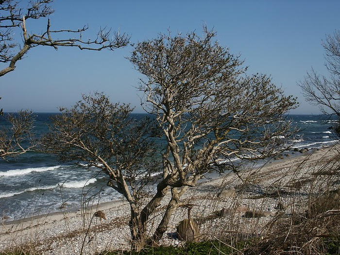 Остров Фемарн – бальзам для души 48926