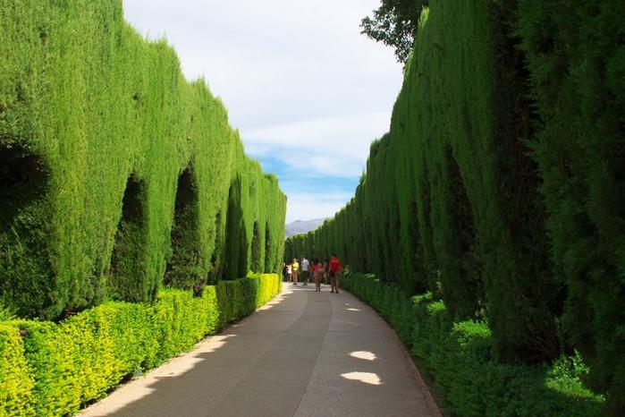 Альгамбра - жемчужина Андалузии 52963