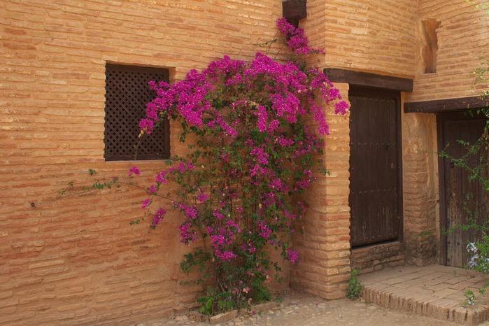 Альгамбра - жемчужина Андалузии 74190