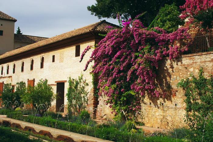 Альгамбра - жемчужина Андалузии 61813