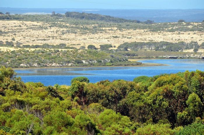 Остров Кенгуру 78005