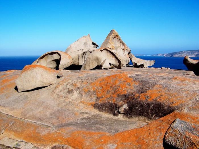 Остров Кенгуру 22907