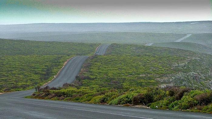 Остров Кенгуру 77103