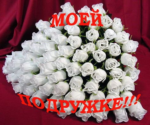 http://img1.liveinternet.ru/images/attach/c/1//62/688/62688095_0_2fcdf_54b4890f_L.jpg