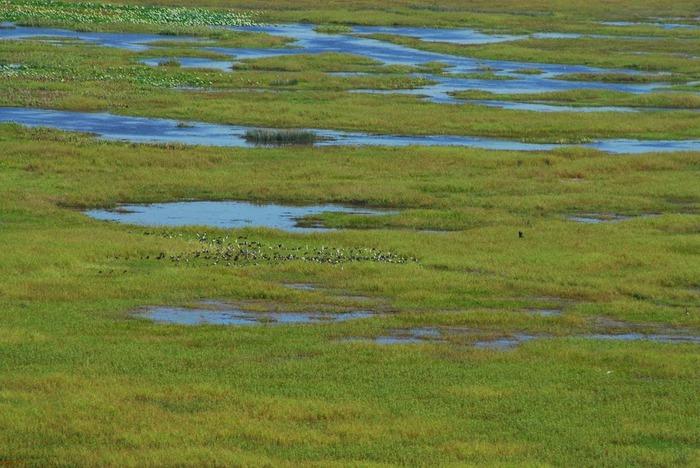 Национальный парк Какаду (Австралия) 85582