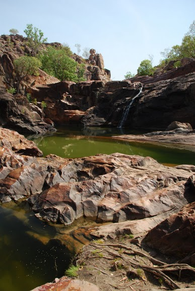 Национальный парк Какаду (Австралия) 58191